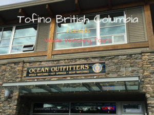 Whale Watching In Tofino BC {Ocean Outfitters}