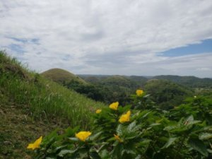 Full Day Bohol Countryside Tour {Review}