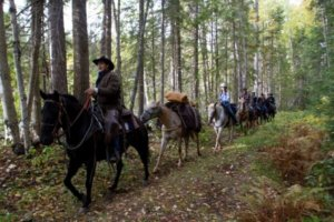 Wells Gray Trail Rides In BC {Battle Mountain Equine}