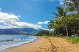 8 Must Visit Attractions In Hawaii {A Closer Look}