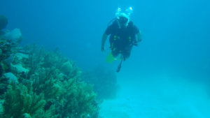 Enjoy Scuba Diving Over 50 Years Of Age